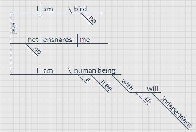 I am no bird-Good
